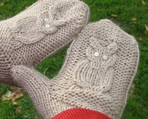 Love this! Owl knitted mittens