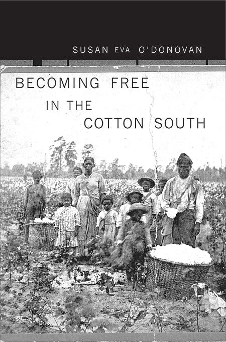 impact of slavery on the south Impact of the mexican-american war on slavery from the north and the south for the slavery debate to occur in these effects in the war.