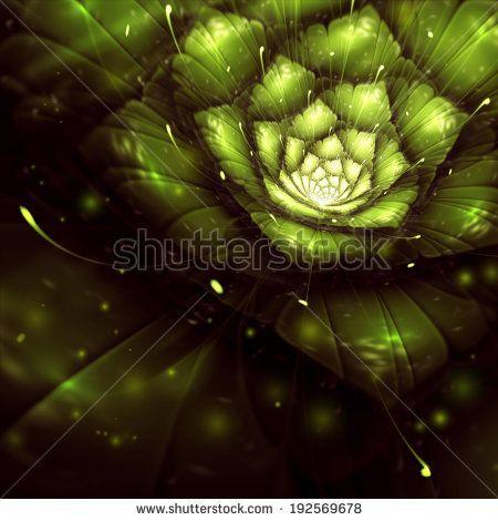 green abstract flower with sun rays, fractal, digital art, bitmap illustration - stock photo