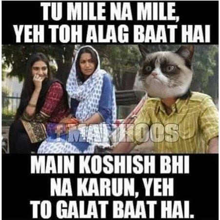 Try karna to mera haq banta hai bc  #manhoosbilli #grumpycat