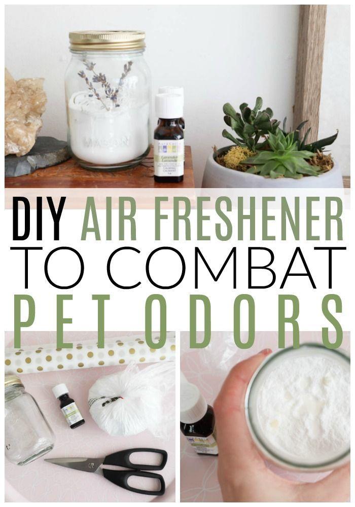 Diy Air Freshener To Combat Pet Odors Diy Air Freshener Home