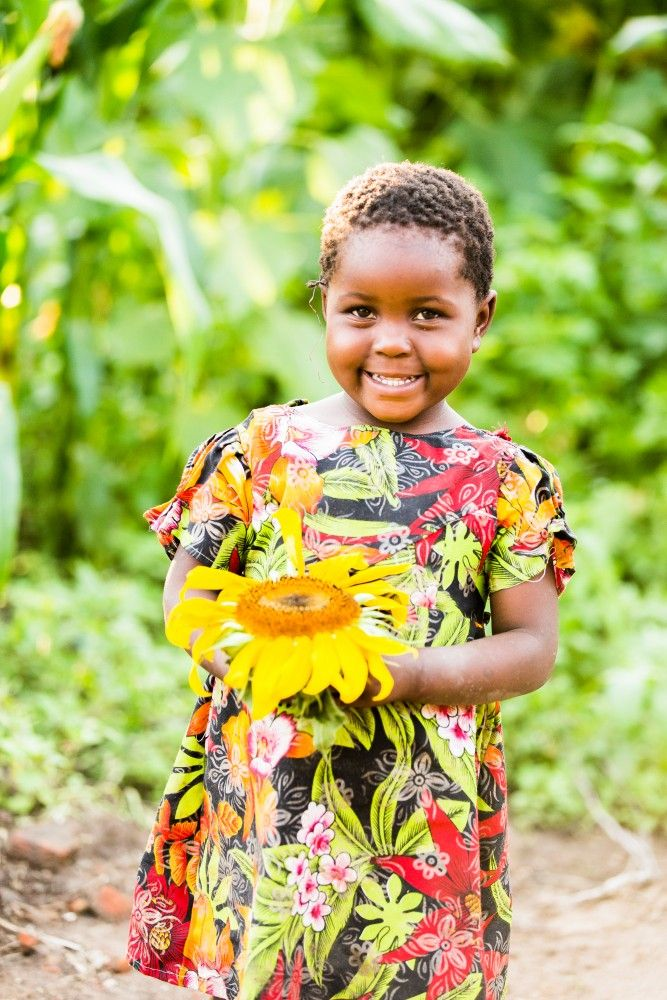 While many small, rural farmers in Tanzania are engaged in sunflower growing, they face a number of constraints that prevent them from taking advantage of this situation. Low access to quality seed and limited knowledge of modern production techniques keep yields low. World Vision Ireland