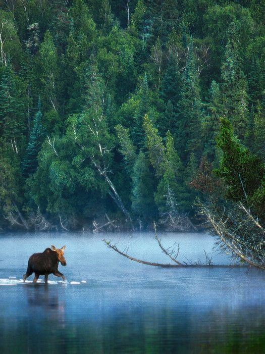 The 10 Most Underrated National Parks In The U S