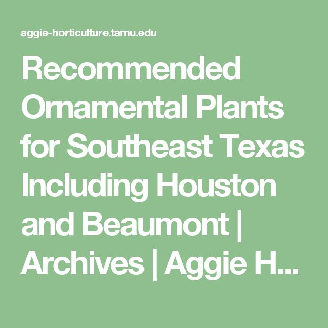 Recommended Ornamental Plants for Southeast Texas Including Houston and Beaumont | Archives | Aggie Horticulture
