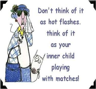 Best 25 Hot Flashes Humor Ideas On Pinterest Menopause