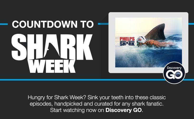 #Sharks #Week #Discovery #TV #Series #Episodes #Streaming July 2017 #Marine #Wildlife