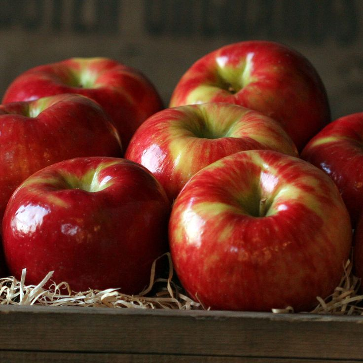 Honey crisp apples Sweets Pinterest
