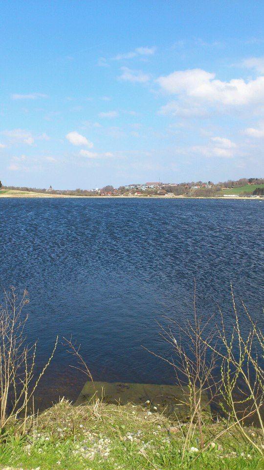 Fyrkat Engsø med Hobro i baggrunden – her: Fyrkat engsø.