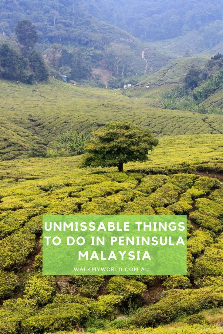 Our guide to the best things to do in Peninsular Malaysia.