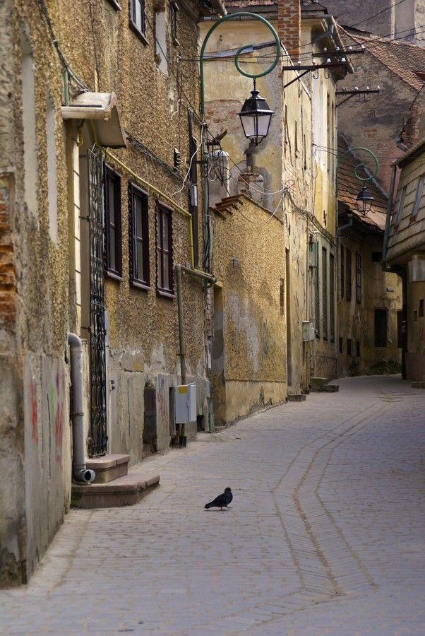 Old town's street by Roxana Sandu on 500px  Brasov, Romania