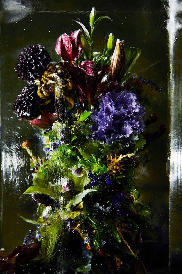 Flower Bouquets Frozen in Blocks of Ice by Makoto Azuma