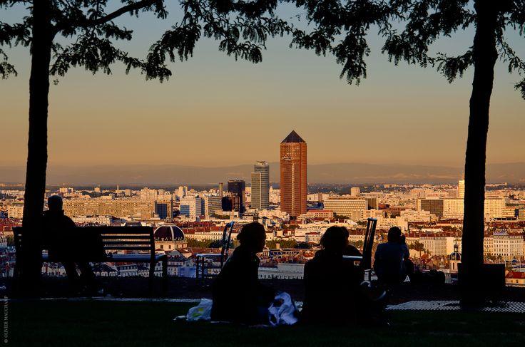 Le Jardin des Curiosités - Lyon