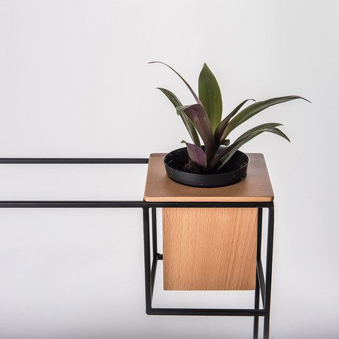 Wall shelf with plant holder