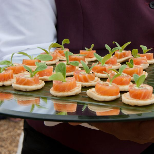 Best 25 canapes catering ideas on pinterest meat for Canape food ideas