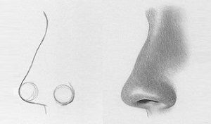 Tutorial: How to draw a nose from the side  http://rapidfireart.com/2013/07/03/how-to-draw-the-nose-profile-view/