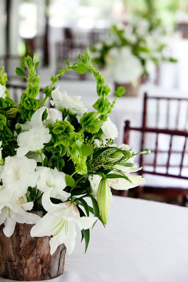 Best bells of ireland wedding flowers images on pinterest