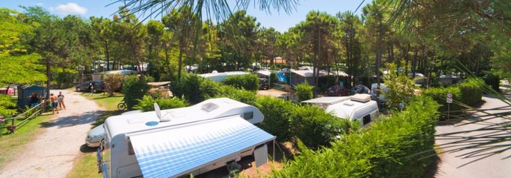 Hundefreundlicher Campingplatz in Bibione Pineda, direkt am Meer, in einer der schönsten Gegenden der Adria-Küste. Haustiere Herzlich Willkommen!  #urlaubmithund #italien #camping #campingmithund #bibione #adria #meer #adria #campingplatz #venetien #ferienmithund #urlaub #ferien