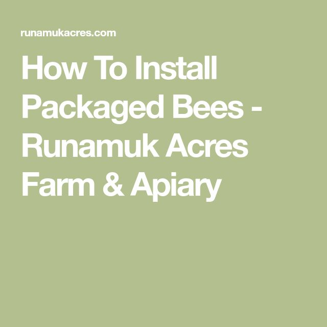 How To Install Packaged Bees - Runamuk Acres Farm & Apiary