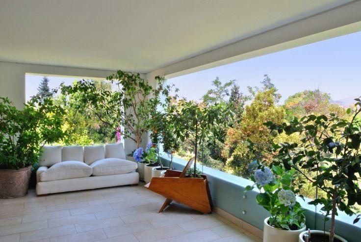 Dieser balkon ist berdacht und mit vielen zimmerpflanzen - Zimmerpflanzen gestaltungsideen ...