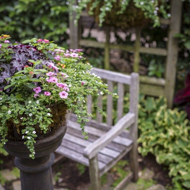 32 Best Deck Rail Planters Images On Pinterest: 32 Best Deck Decor/Railing Planters Images On Pinterest