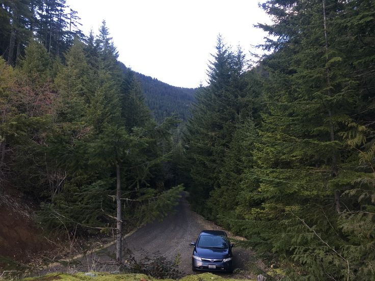 Amazing view of the mount ellinor and my Honda Civic Hybrid 06 1.3l