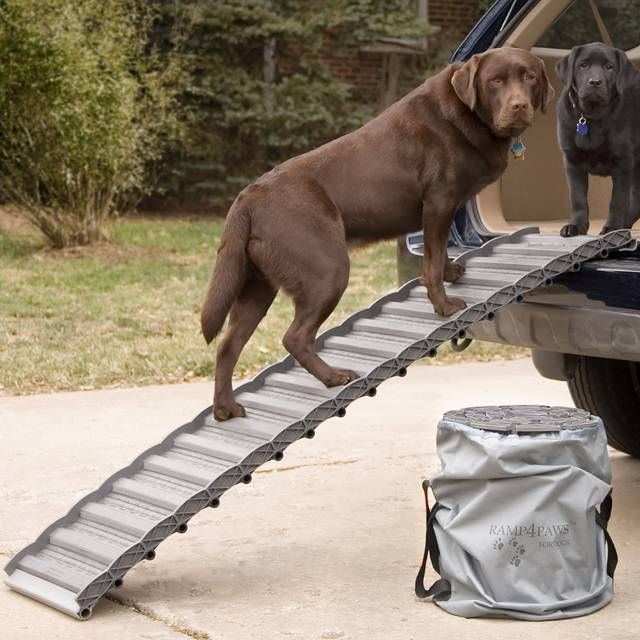 Our Roll Up Dog Ramp features a patented roll-out, roll-up design that reduces stress on your pets' legs and joints, making it easier and safer to climb into cars or up stairs. This ramp is the perfect solution for dogs of any age, particularly those with limited mobility, advanced age, post-surgery, or injury.     Made of tough polypropylene and polycarbonate constructionSafety rated for pets up to 160 lbs.Easily rolls into a lightweight cylinder for storage or transportingNylon carryin...