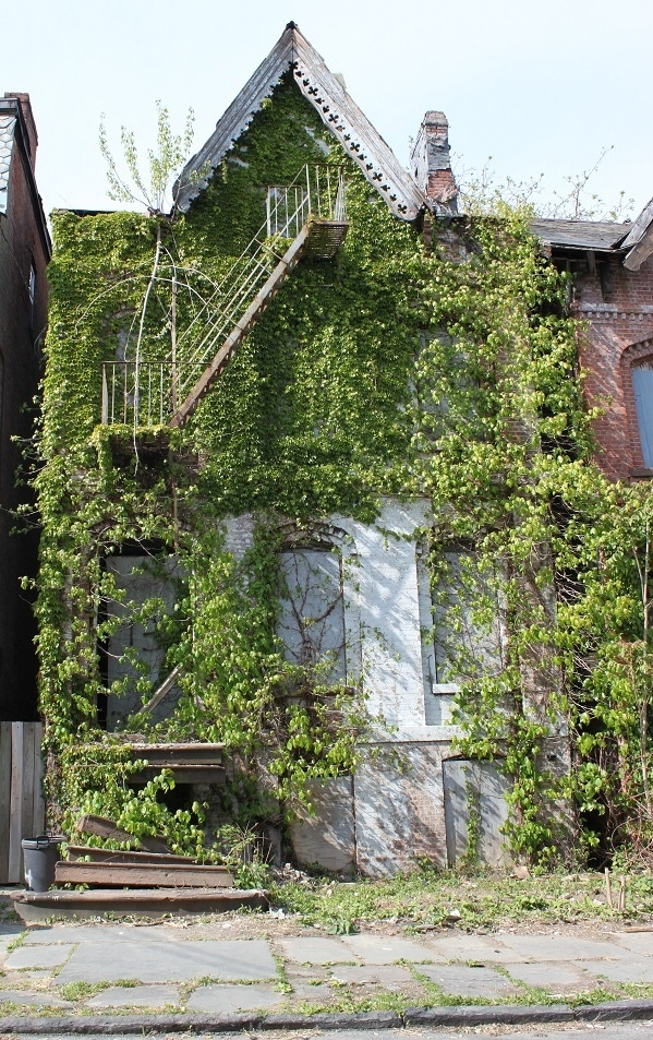 Abandoned in Newburgh, NY.