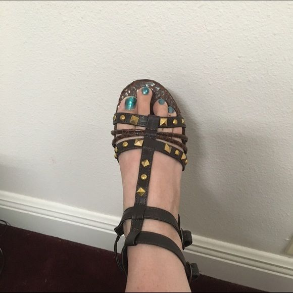 Women's studded gladiator sandals These are brand new in the box women's studded sandals.  They are brown with gold rhinestones.  They have buckles that allow you to adjust to right size for you legs.  They have flat bottoms no heel Easy  Shoes Sandals