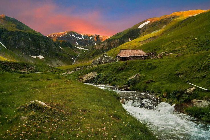 """Munții Țarcu, salvați de la distrugere prin proiecte energetice """"verzi"""" - D - Petre"""