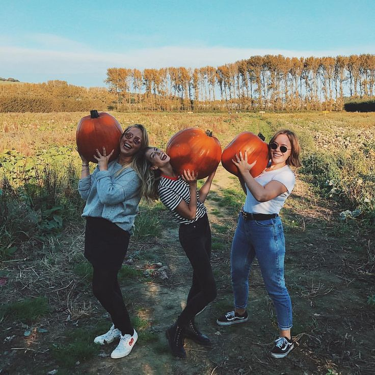 "Polubienia: 521.5 tys., komentarze: 957 – Zoella (@zoella) na Instagramie: ""We went pumpkin picking & found the biggest pumpkins we could! So big, all three boys had to carry…"""