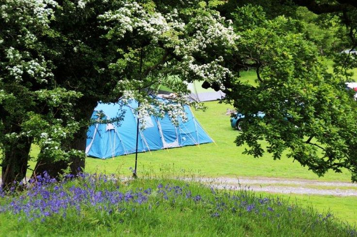 Gwerniago Campsite, Pennal, Snowdonia National Park, Powys, Wales. Camping. Campsite. Holiday. Travel. Outdoors. Walks. Countryside.