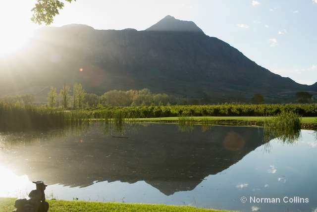 breathtaking views from the cellar lawns. Come and enjoy a glass of delicious Saronsberg wine!