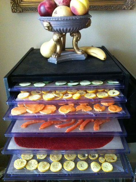 So many wonderful raw and vegan recipes can be made with the Excalibur Dehydrator. Veggie chips, kale chips, cookies, fruit leather, dried herbs and much more!