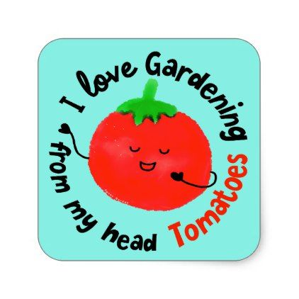 Positive Tomato Pun - From My Head Tomatoes Square Sticker - love gifts cyo personalize diy