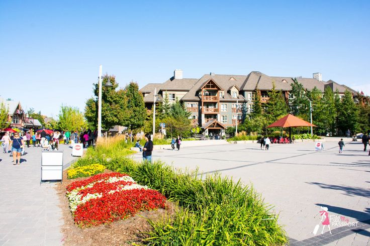 You Will Love Blue Mountain Ontario Year Round For These Reasons by Fill My Passport