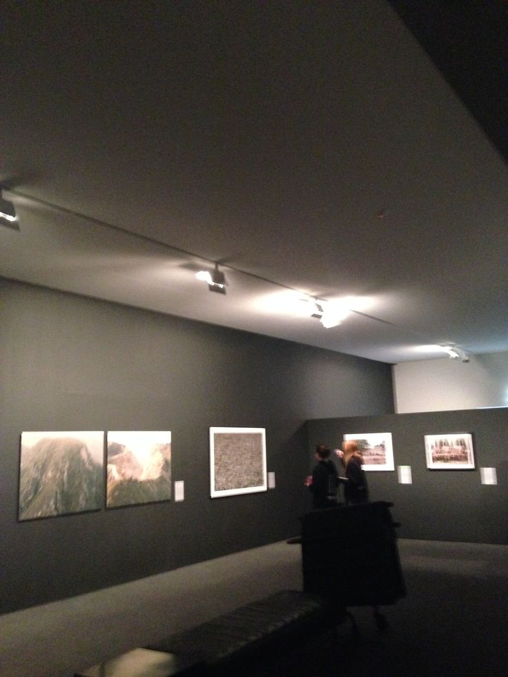 Bowness Prize Exhibition MGA 2014 Exhibition space, Featuring track lighting