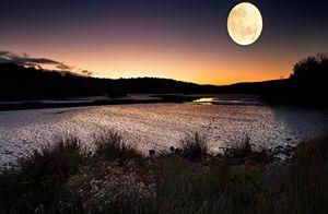 táj, természet, este, folyó, cserjék, vadvirágok, domb, Hold, holdfény