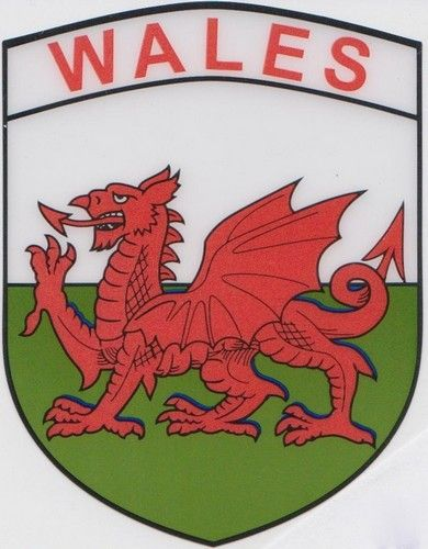 welsh flag items | Wales Flag Car Sticker - Shield (Self Cling)