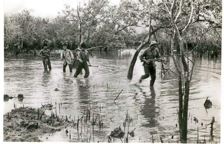 Members of the 5th Viet Cong Division, D445 Battalion and some North Vietnamese soldiers in Phuoc Tuy Province, South Vietnam.