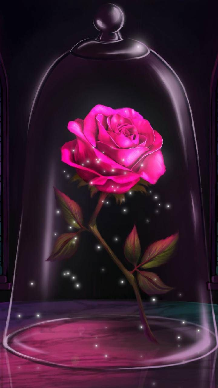 Download Glass Rose Wallpaper By Galaxylover3131 04 Free On