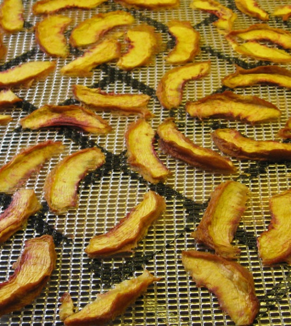 Dehydrating Basics. Lots more tips and ideas