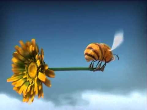Minuscule - De wasp - YouTube