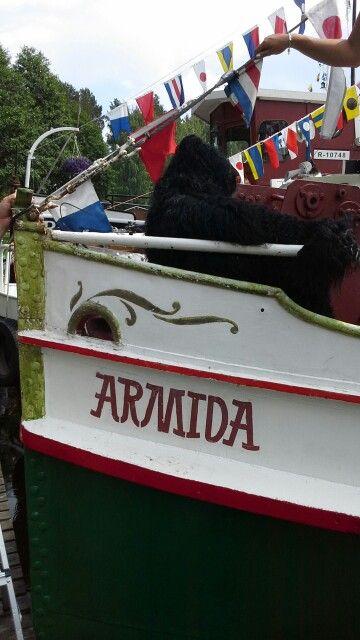 Laiwakoira. #Wanhojen_Laiwojen_kesäregatta #Dog #Boat #Summer #Kuopionalue