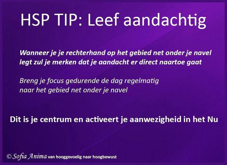 HSP Tip: Leef aandachtig