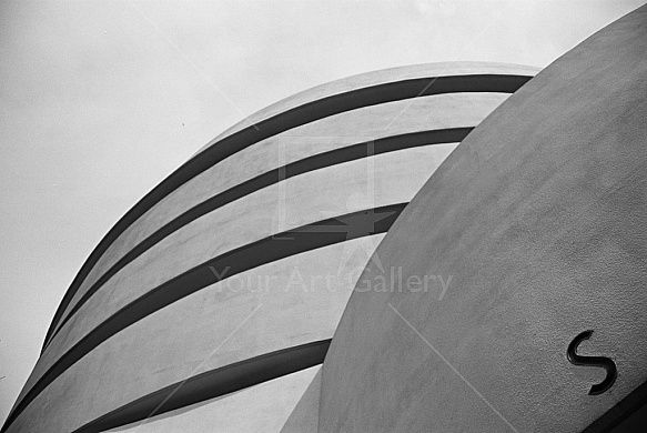 S Curve By artist Andres Schlanbusch