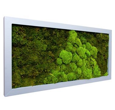 Frame Aluminium - platmos en bolmos