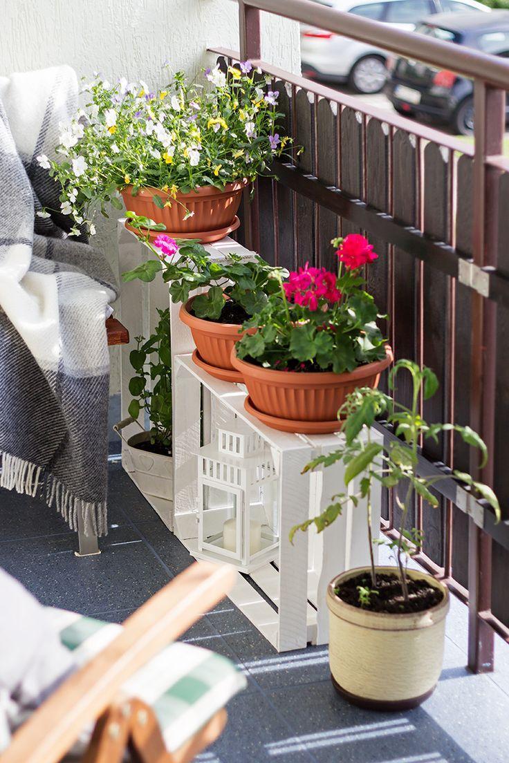 Jak Urzadzic Balkon W Bloku Metamorfoza Mojego Balkonu Kameralna In 2020 Plants Dream House