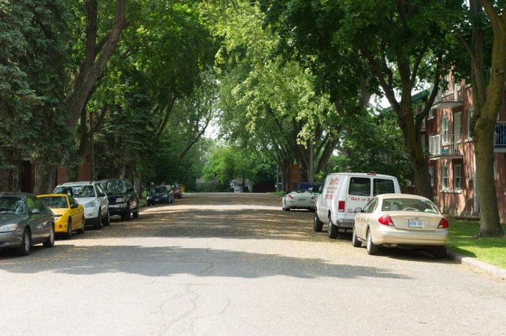 Quiet, tree-lined streets