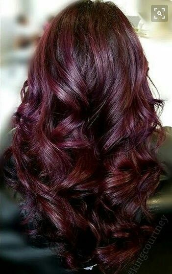 Burgundy Plum Highlights