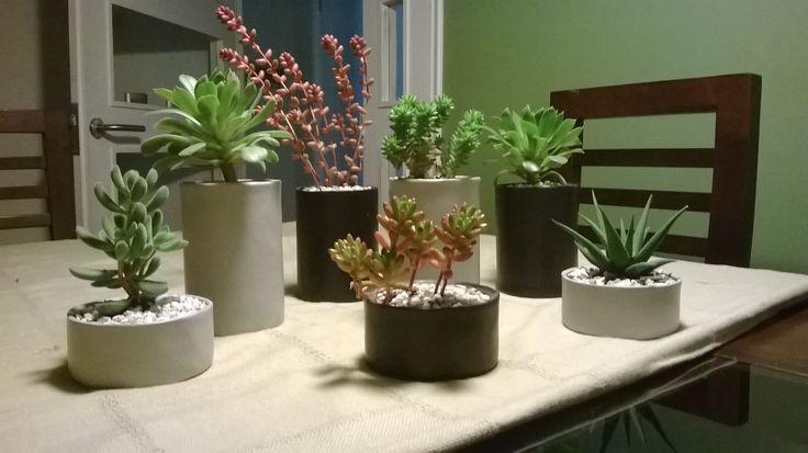 Macetas de Suculentas elaboradas con material reciclado, un elemento decorativo perfecto para tu hogar u oficina.